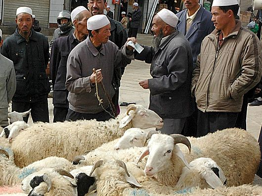 Datei:Haggling for sheep.jpg