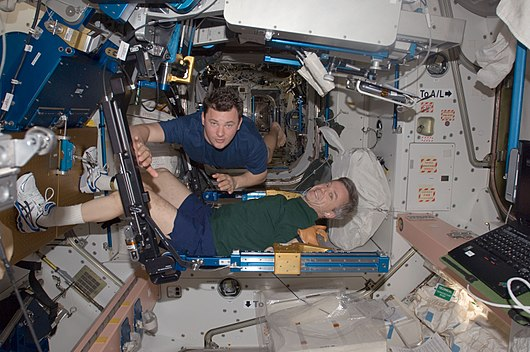 Datei:ISS-20 Robert Thirsk exercises using the aRED in the Unity node Roman Romanenko assists.jpg