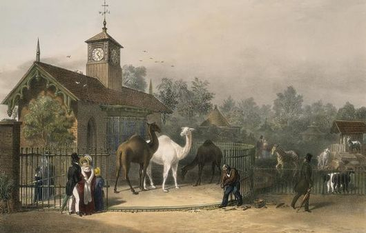Datei:View of the Zoological Gardens1835.jpg