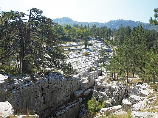 Datei:Carbonate platform of the dinaric alps, karst geomorphy Bijela gora Montenegro.JPG