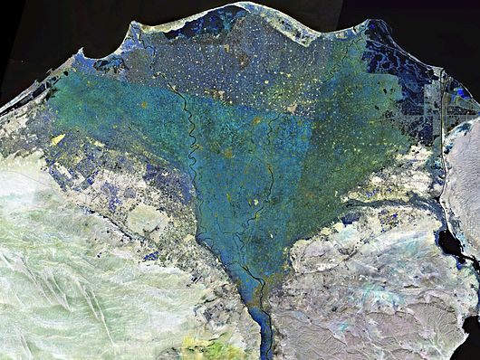 Datei:Nile delta landsat false color.jpg