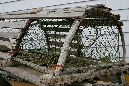 Datei:Lobster trap.jpg